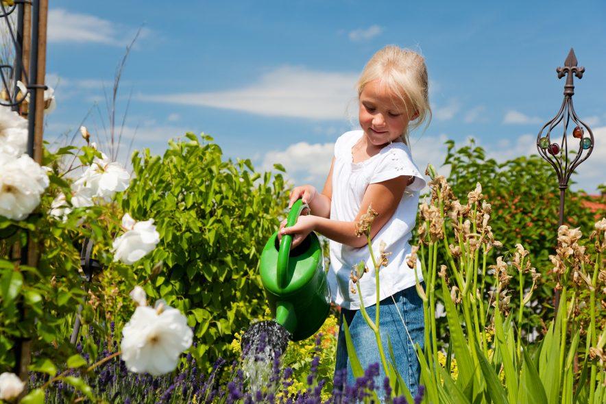 Slik får du en grønn og frodig hage
