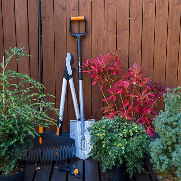 Hvordan gjøre hagen vinterklar?